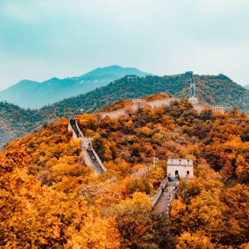 Reflection: The Amazing Chengdu CAS Trip Experience